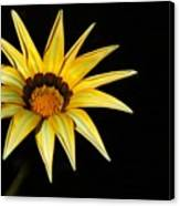 A Bright Yellow Star Canvas Print