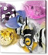 A Bunch Of Colorful Fish No 01 Canvas Print