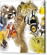 A Bunch Of Colorful Fish No 05 Canvas Print