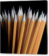 A Bunch Of Pencils Canvas Print