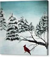 A Cardinals Perch Canvas Print