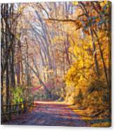 A Change Of Seasons On Forbidden Drive Canvas Print