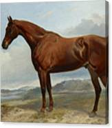 A Chestnut Hunter In A Landscape Canvas Print