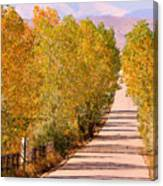 A Colorful Country Road Rocky Mountain Autumn View  Canvas Print
