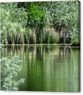 A Cool Drink Of Spring Canvas Print