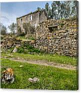 A Cottage In Ruins Canvas Print