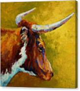 A Couple Of Pointers - Longhorn Steer Canvas Print