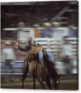 A Cowboy Rides A Bucking Bronco Canvas Print