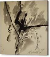 A Crack In The Dam Canvas Print