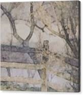 A Creek Runs Through It Canvas Print