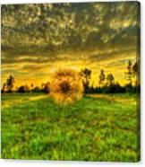 A Dandy Sunset Canvas Print