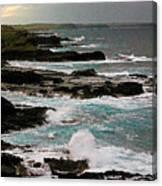 A Dangerous Coastline Canvas Print
