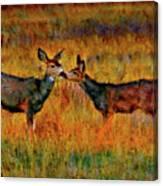 A Deer Kiss Canvas Print