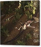 A Dimorphodon Pterosaur Chasing An Canvas Print