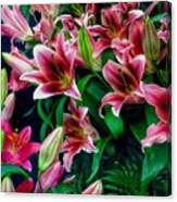A Display Of Lilies Canvas Print