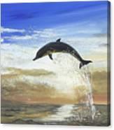 A Dolphin's Life Canvas Print
