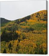 A Drive Throw The Forest In The Fall Canvas Print