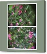 A Drunken Worms View Of A  Flower  Canvas Print