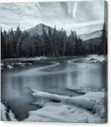 A Dry Winter 2 Canvas Print