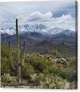A Dusting Of Snow In The Sonoran Desert  Canvas Print