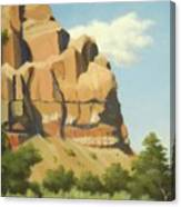 A Face In New Mexico Canvas Print