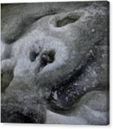 A Face Of Winter Canvas Print