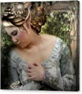 A Fairy's  Friend Canvas Print