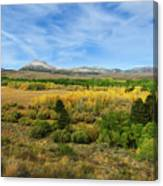 A Fall Day In The Sierras Canvas Print
