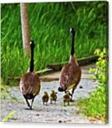 A Family Stroll Canvas Print