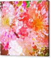 A February Abstract Canvas Print