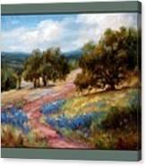 A Few Bluebonnets Canvas Print