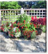 A Few Well Placed Pots Canvas Print