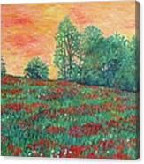 Field Of Beauty Canvas Print