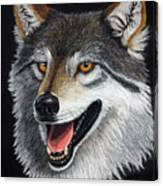 A Friendly Wolf Canvas Print