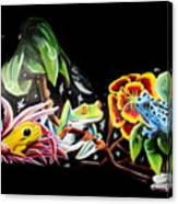 A Frogs Life Canvas Print