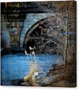A Frozen Corner In Central Park Canvas Print