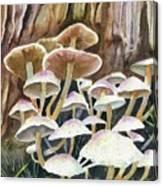 A Fungus Amongus Canvas Print