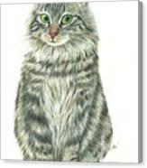 A Furry Cat  Canvas Print