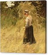 A Girl Harvesting Hay Canvas Print