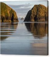 A Glossy Beach Canvas Print
