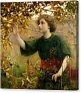 A Golden Dream Canvas Print