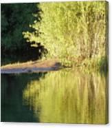 A Golden Reflection Canvas Print