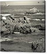 A Good Day Fishing On Monterey Bay In Black And White Canvas Print