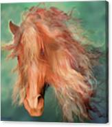 A Horse Called Copper Canvas Print