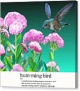 A Hummingbird Visits Canvas Print