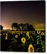 A Kansas Evening Canvas Print