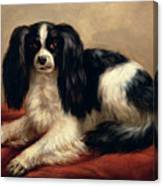 A King Charles Spaniel Seated On A Red Cushion Canvas Print