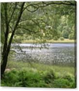 A Lake Near Glendalough Canvas Print