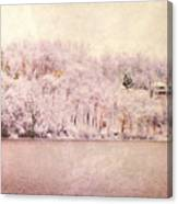 A Late Winter Xiv Canvas Print