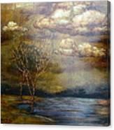 A Light Sheen Canvas Print
